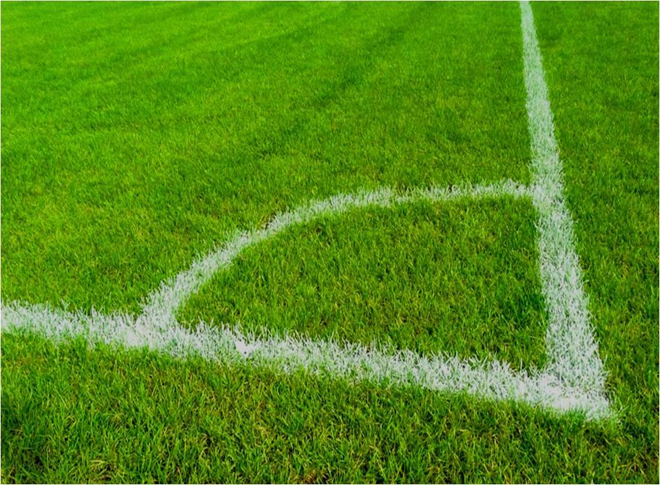 análisis para áreas verdes en campos de fútbol