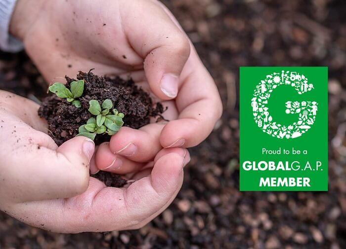 AGQ Labs México miembro de GLOBALG.A.P. 2019