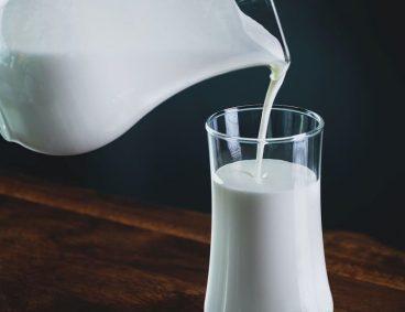 Aflatoxina M1 en productos lácteos