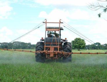 Factores influyentes en la degradación de fitosanitarios