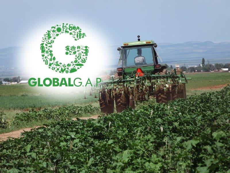 AGQ Labs miembro del grupo técnico de Global G.A.P.