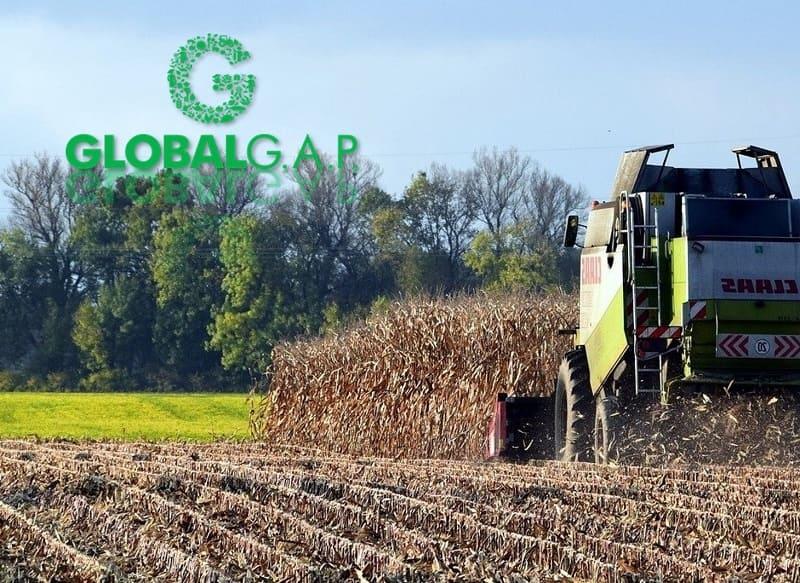 AGQ Labs México miembro de GlobalGAP 2021