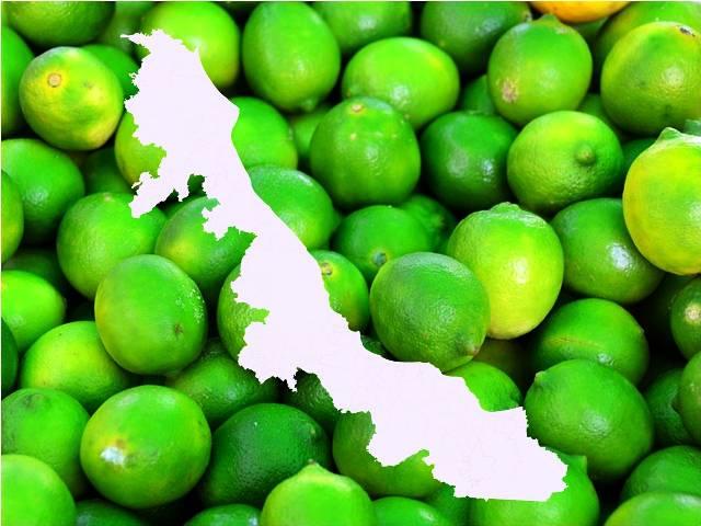 Veracruz agroalimentario