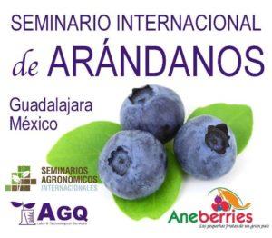 seminario arandanos mexico