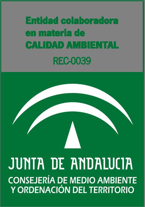 entidad-junta