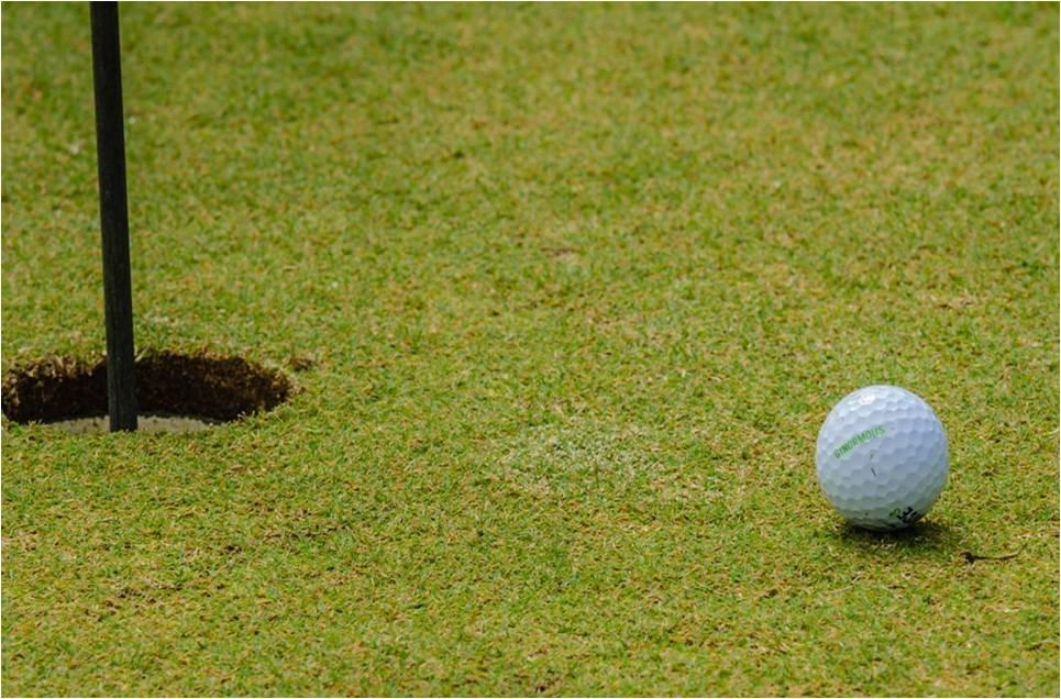 análisis para areas verdes en campos de golf