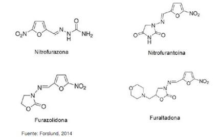 nitrofuranos en alimentos