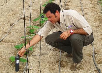 seguimiento nutricional de cultivos agqlabs méxico
